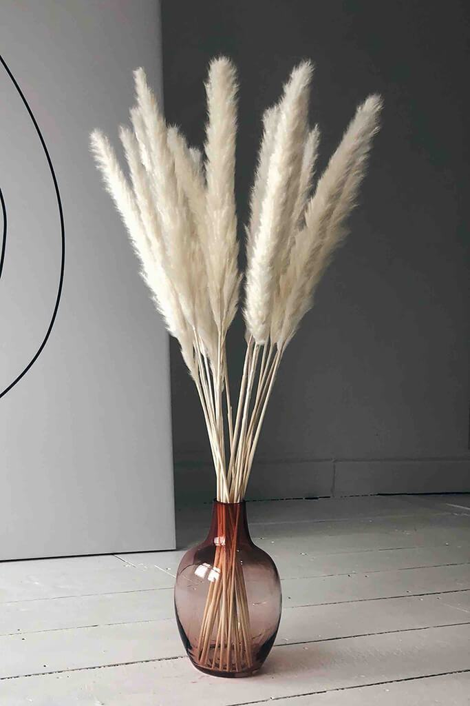 White Small Pampas 8 Stem Bunch