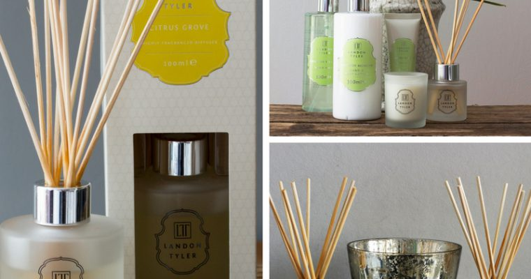 Diffuse the stresses of the day with a Landon Tyler Diffuser!