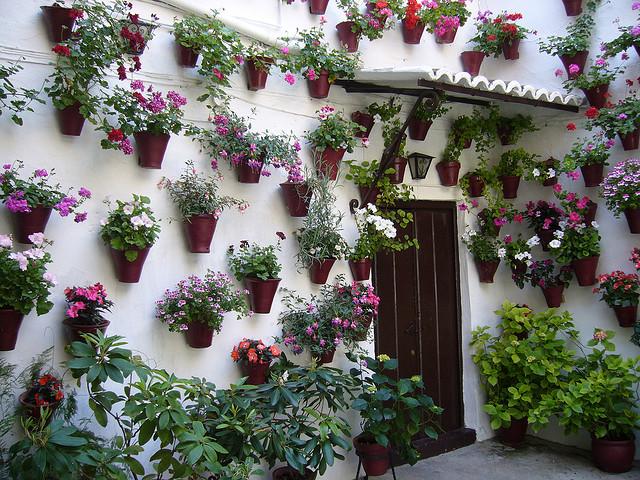 Genius Ways to Improve the Flow Between Your House and Garden - Bring Outdoors Indoors