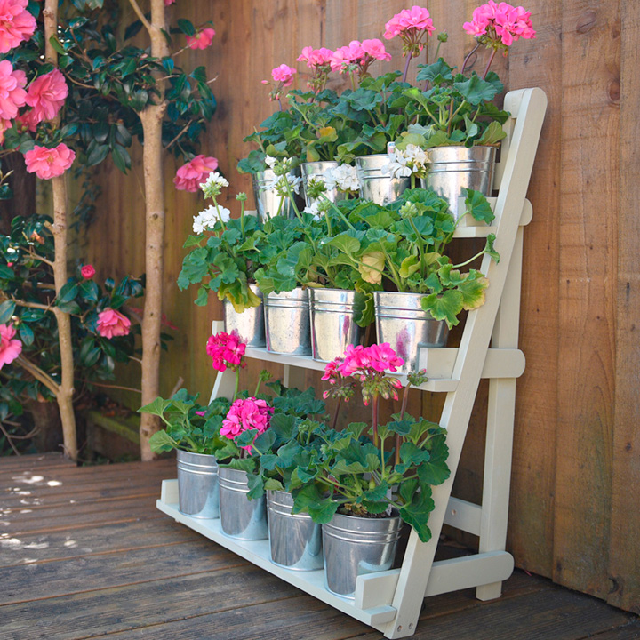 Looking after your bedding plants