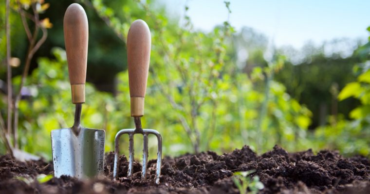 Tips for getting more out of your garden