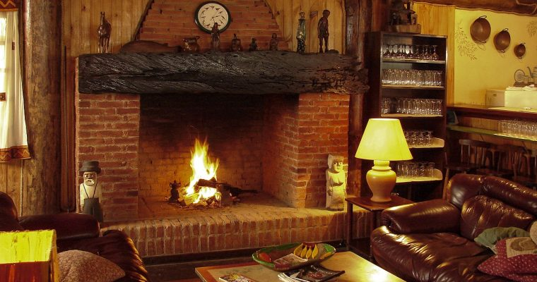Traditional Wood Burner vs. Gas Fire: Which One Should You Choose?