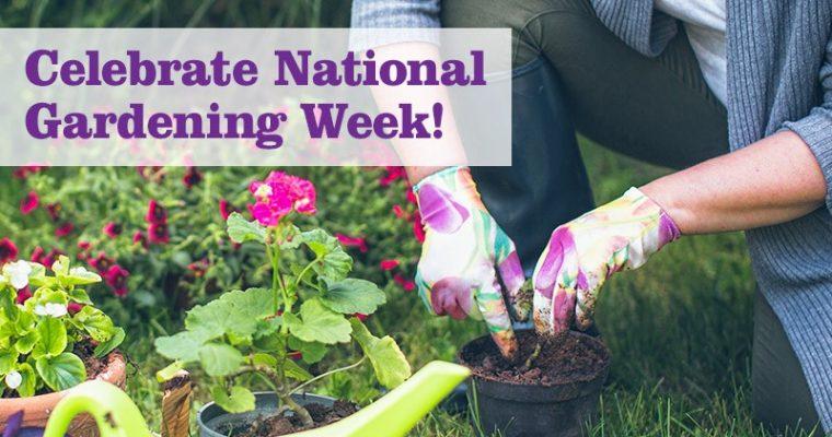 National Gardening Week hacks – how to create the perfect urban garden