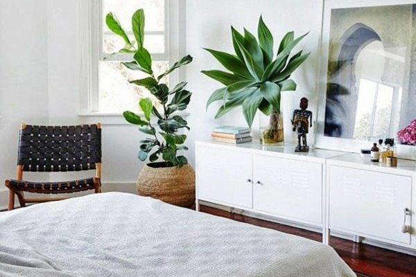 3 Ways to Improve the Air Quality in Your Room and Sleep Better