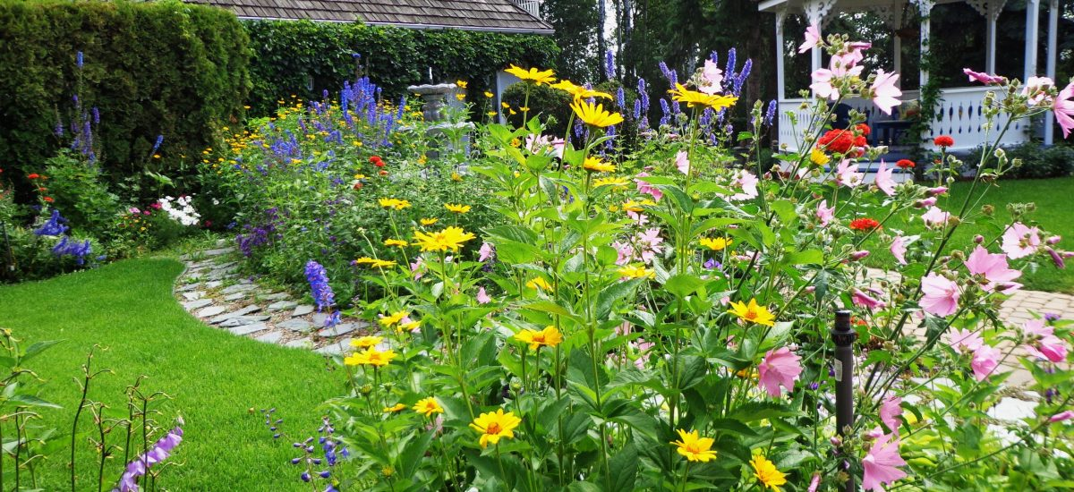 Green Gold: Six things to do with your garden that could boost the value of your home