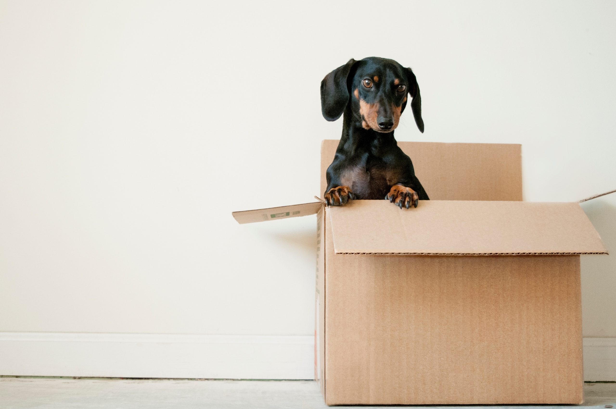Commercial Moving And Storage