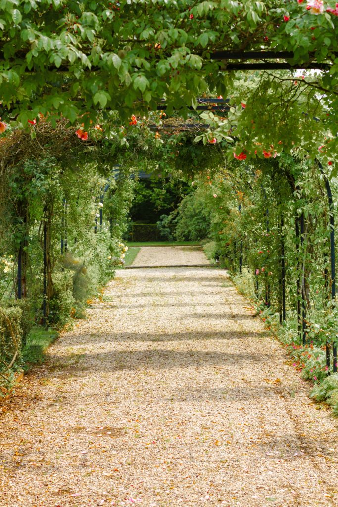 How can you improve your garden in time for Summer?