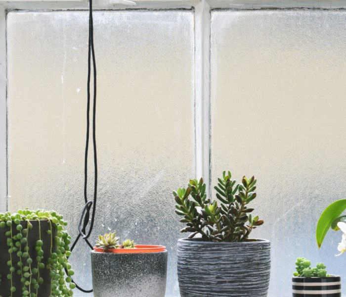 3 Most Important Reasons To Hire Window Cleaners