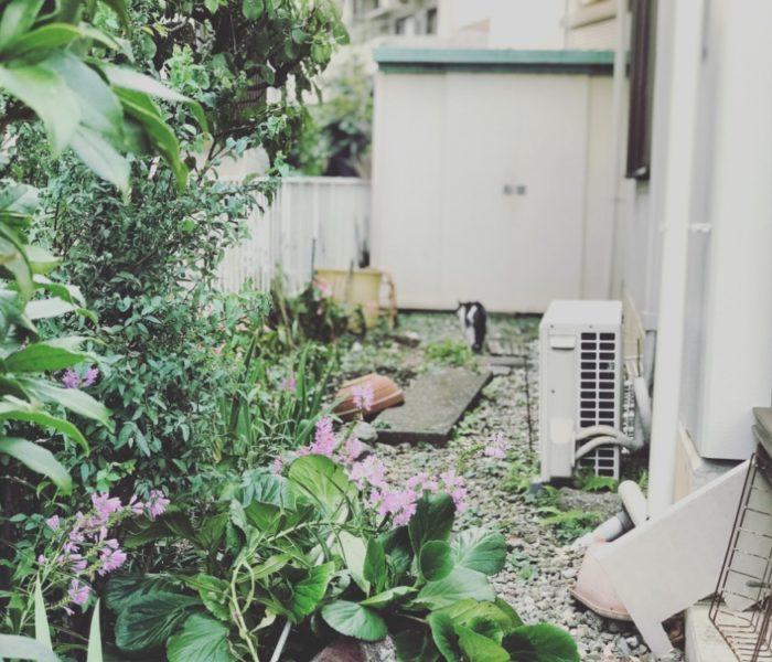 How Can I Find 24 Hour AC Repair in Nampa, ID?