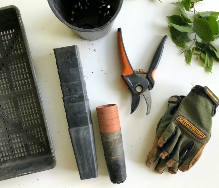 Gardening Tools – What Experts Advise