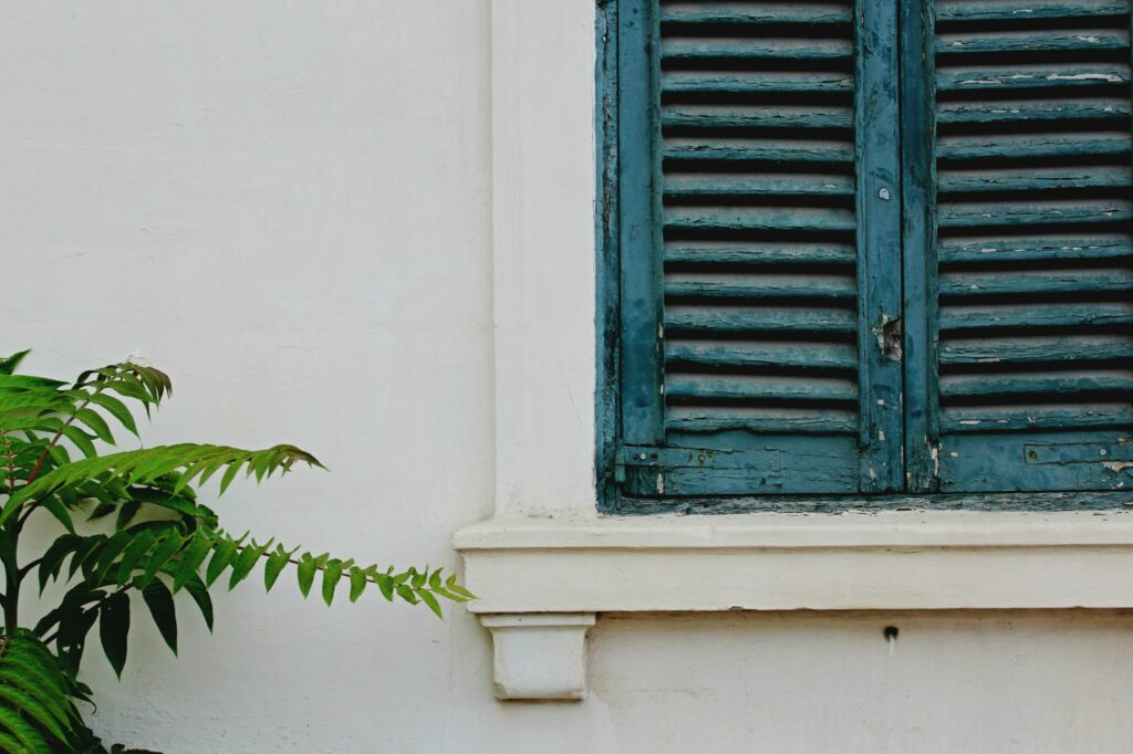 Types of Interior Window Shutters