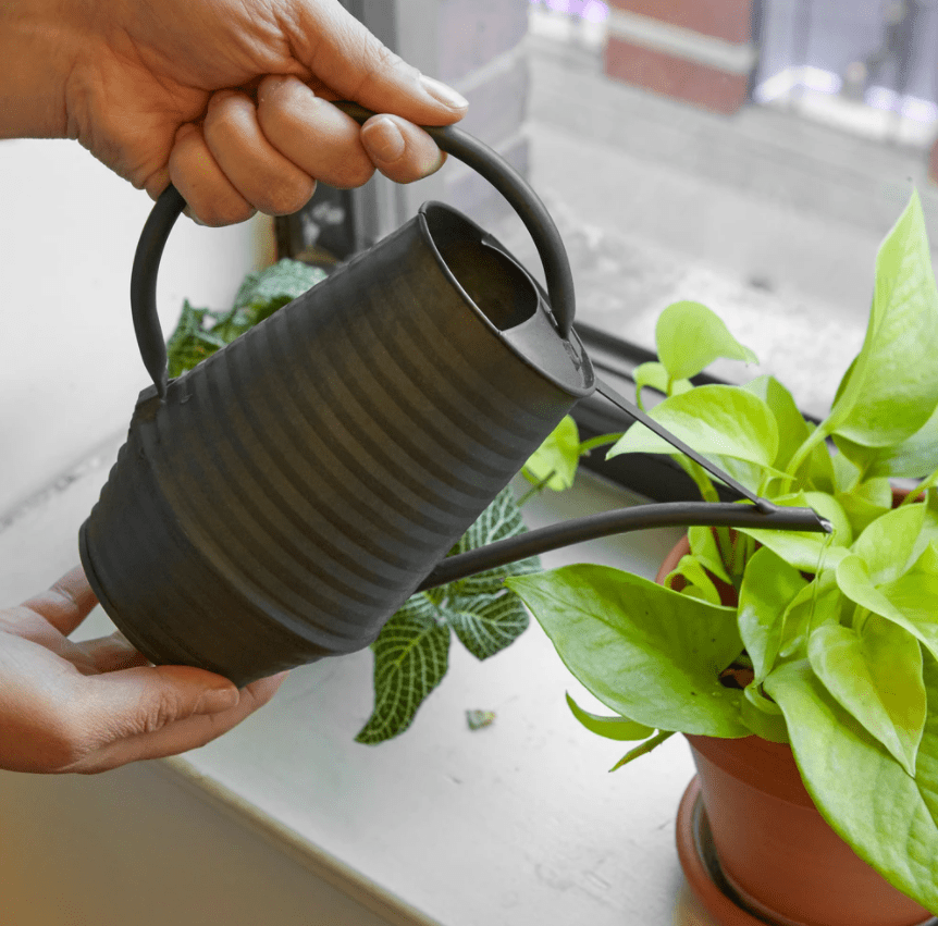 Kikkerland Industrial Watering Can