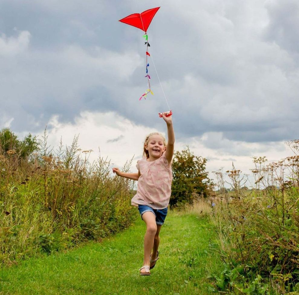 Kikkerland Huckleberry Red Kite