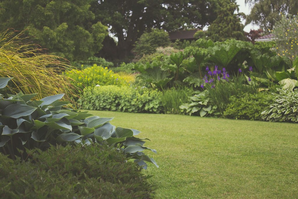 Elevate The Curb Appeal Of Your Lawn With These Maintenance Tips