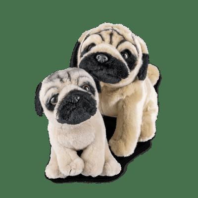 Pug Parent & Puppy Set